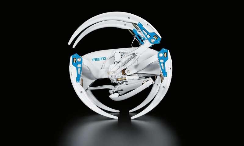 BionicWheelBot v modu koulení. Robot s patnácti motorky imitujícími pohyb pavoučích končetin.  Kredit: Kredit: festo