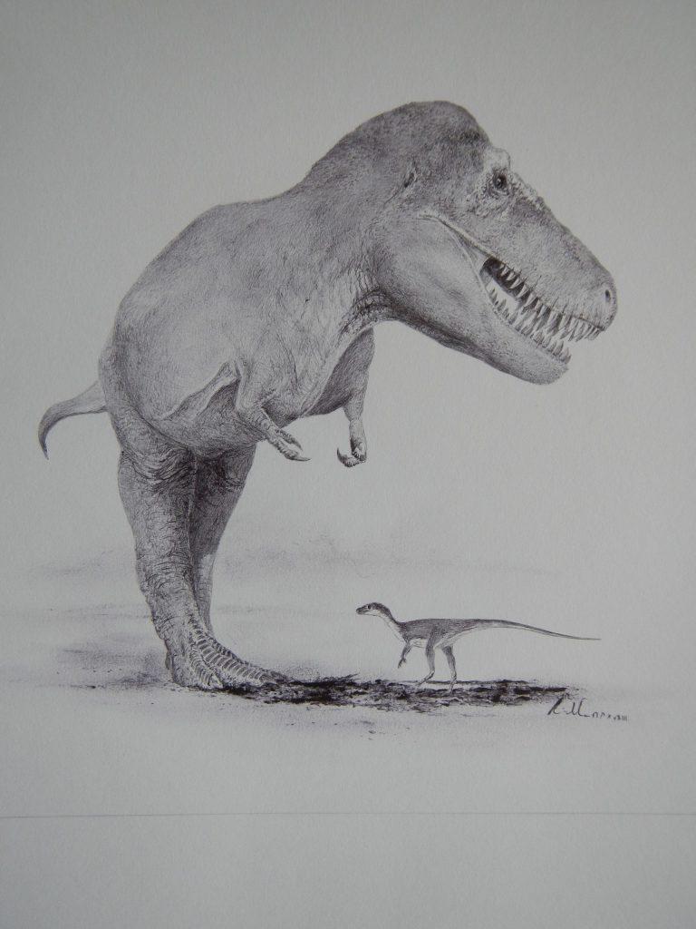 Tyto dva dinosaury (druhy Eoraptor lunensis a Tyrannosaurus rex) dělí zhruba 165 milionů let geologického času. Podle některých výzkumů byli dinosauři na výrazném evolučním ústupu už nejméně deset milionů let před koncem křídy, jasno ale v této zálež
