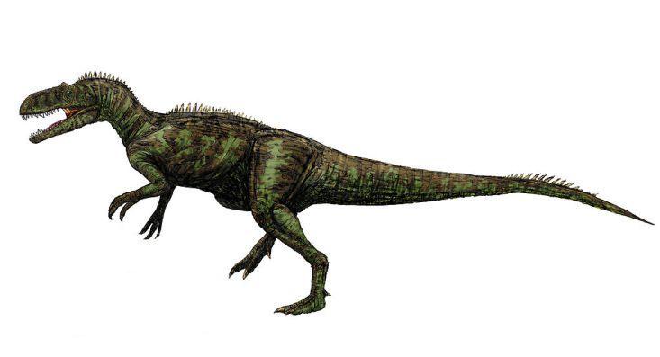 Přibližná představa o vzezření teropoda druhu Chilantaisaurus tashuikouensis. Dravý dinosaurus o hmotnosti menšího slona zřejmě terorizoval všechny ostatní dinosaury na území Vnitřního Mongolska v době před 92 miliony let. Kredit: FunkMonk, Wikipedie
