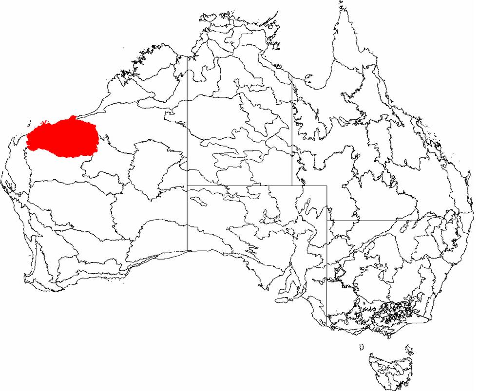 Pilbara, řídce osídlený suchý region v Západní Austrálii. Kromě ložisek plynu, železné rudy a skalních maleb Aboriginců, je pobřežní oblast známa pro výskyt stromatolitů z období prekambria aarchaika. O něco více ve vnitrozemí je lokalita Apex Chert