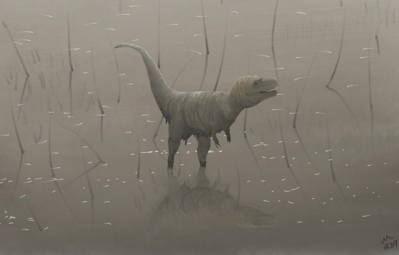 """Rekonstrukce hypotetického vzezření mláděte druhuTyrannosaurus rex, brodícího se jezerem (založeno na kosterním exempláři """"Jane""""). Také nedospělí teropodi tohoto druhu již byli nejspíš vybavenivelmi citlivým čichem, který jim pomáhal při orientaci"""