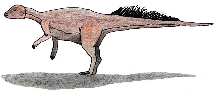 """Přibližná představa o možném vzezření druhu Micropachycephalosaurus hongtuyanensis. Tento malinký ptakopánvý dinosaurus nebyl ve skutečnosti zástupcem """"tlustolebých"""" pachycefalosaurů, ale spíše miniaturním a vývojově primitivním (byť z hlediska geolo"""