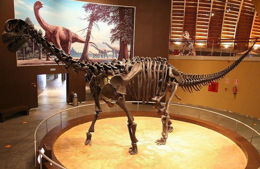 Rekonstruovaná kostra velkého sauropodního dinosaura druhu Camarasaurus supremus v expozici muzea MUJA (Museo del Jurásico de Asturias – Jurské muzeum Asturského knížectví) na severu Španělska. Kredit: Mario Modesto; Wikipedie (CC BY-SA 3.0)