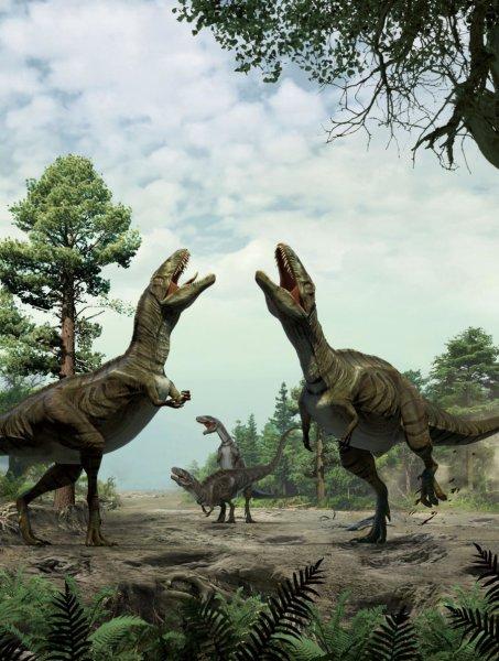 Podobné namlouvací rituály mohly být v období křídy zcela běžné. Týkaly se nepochybně i velkých teropodů v hmotnostní kategorii několika metrických tun, což mohlo skýtat skutečně pozoruhodnou podívanou. Kredit: University of Col