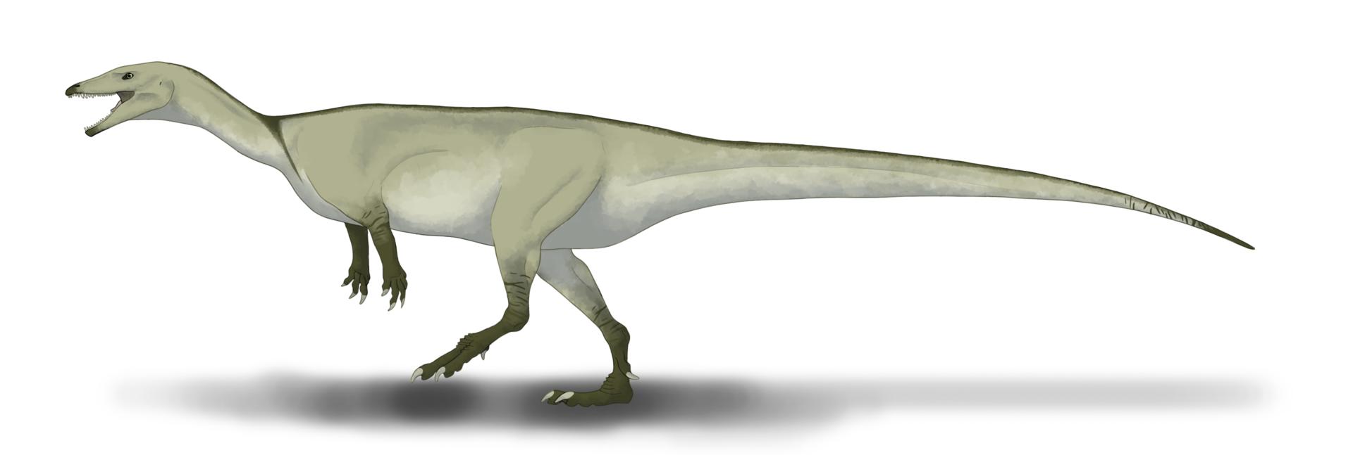 Rekonstrukce vzezření jednoho z nejstarších známých dinosaurů, pozdně triasového druhu Buriolestes schultzi. Tento vývojově primitivní archaický sauropodomorf obýval území současné Brazílie v období raného svrchního triasu (geologický věk karn), asi