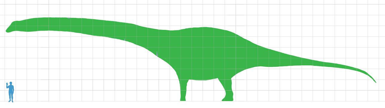Silueta obřího argentinského dinosaura v porovnání s postavou dospělého člověka. Na základě ohromných kosterních elementů dinosaura bylo odhadnuto, že se jeho hmotnost nejspíš blížila stovce metrických tun. Pro přesnější odhad