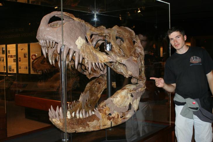 """Autor blogu u lebky tyranosaura s označením MOR 008, expozice Museum of the Rockies, Bozeman, Montana. Ať už je to největší známá lebka """"rexe"""" nebo ne, jde o skutečně impozantní exponát. Nejspíš šlo o odrostlého starého jedince,"""