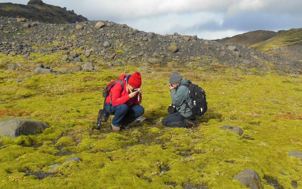 """Sylvie Presselová (na snímku vpravo): """"Raný život na zemi s malým """"z"""", připomínal porost výtrusných rostlin, který byl velmi podobný tomuto na lávovém poli na Islandu. Kredit: Paul Kenrick."""