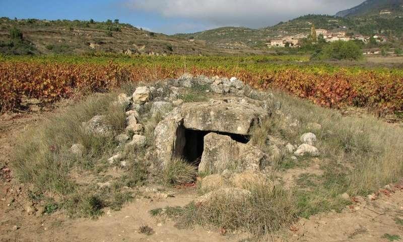 La Cascaja Dolmen, oblast La Rioja, nedaleko mÄ›sta LogroĹ?o, ĹpanÄ›lsko (42.582711N  2.727442W). Dolmen z jinĂ©ho pohledu spol s vinicĂ a blĂzkou vesnicĂ zde.