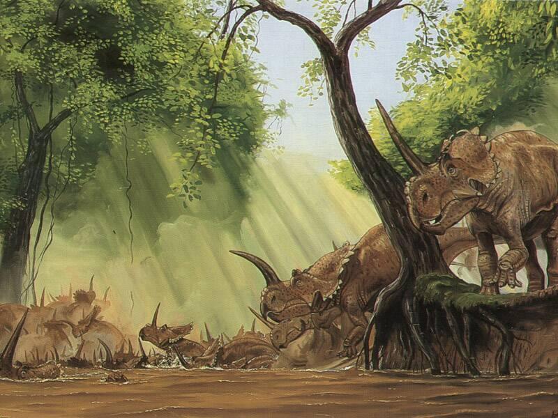 Dříve se předpokládalo, že masovou akumulaci fosilií centrosaurů způsobila rozbouřená řeka, ve které utonula celá stáda těchto ceratopsidů. Kredit: Gregory S. Paul