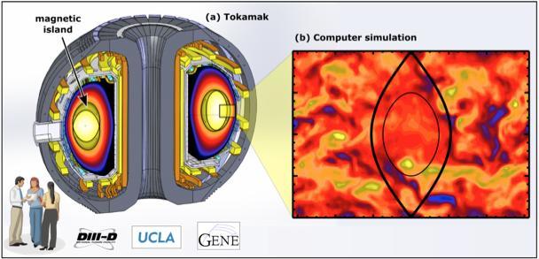 Magnetické ostrovy vtokamaku. Kredit: DIII-D National Fusion Facility.