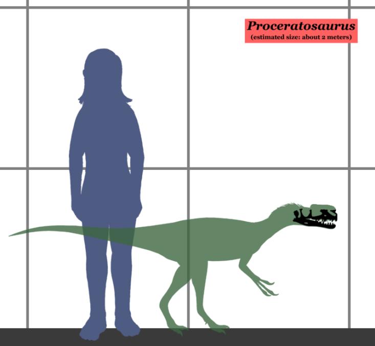 Velikostní srovnání proceratosaura a člověka. Největší exempláře tyranosaurů byly asi pětkrát delší a dosahovaly více než stonásobné hmotnosti.Kredit:Conty, Wikipedie (CC BY 3.0)