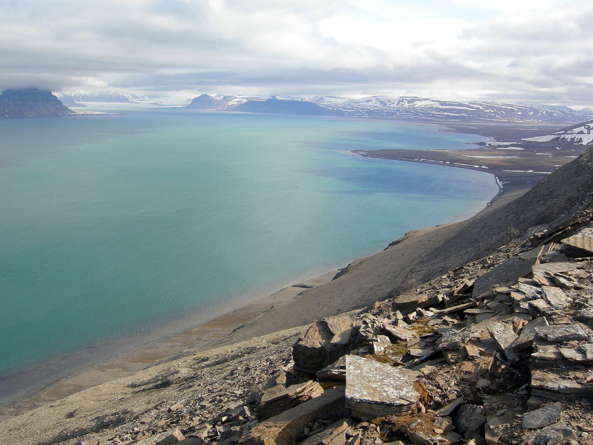 Pohled na Isfjorden, v jehož blízkosti byly objeveny první fosilní otisky stop dinosaurů z území Špicberků. K objevu došlo roku 1960 a od té doby podobných nálezů z této mrazivé oblasti významně přibylo. Kredit: Wilson44691; Wikipedia (volné dílo)