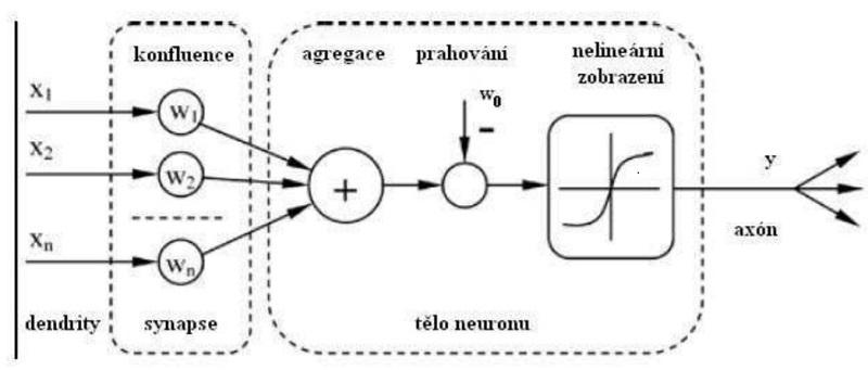 Model neuronu Kredit: Vojtěch Jíša, ZCU.