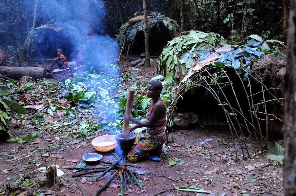 Pygmejští lovci-sběrači v pralese rovníkové Afriky. Právě na základě svědectví těchto domorodých lidí vznikly pověsti o Mokele-mbembe i mnoha dalších kryptidech. Kredit: JMGRACIA100; Wikipedia (CC BY-SA 4.0)