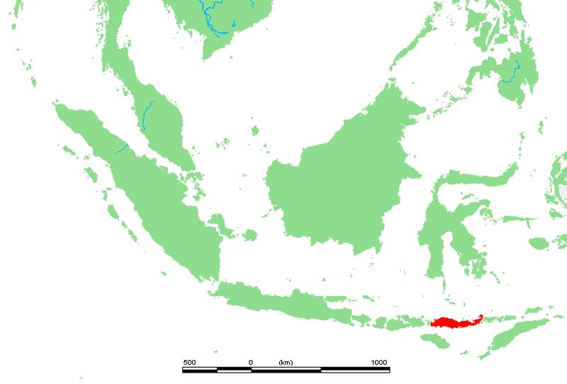 Ostrov Flores, Indonésie. Kredit: M.Minderhoud / Wikimedia Commons.
