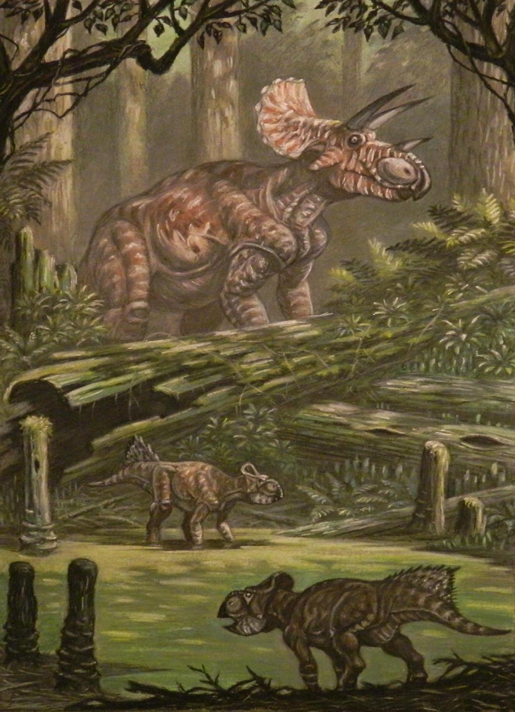 """Triceratops horridus patřil mezi poslední žijící neptačí dinosaury. Svědčí o tom také údajné otisky kůže skvěle zachované """"mumie"""" tohoto rohatého dinosaura, objevené přímo na lokalitě """"Tanis"""". Spolu s menšími leptoceratopsy (zde v popředí obrázku) se"""