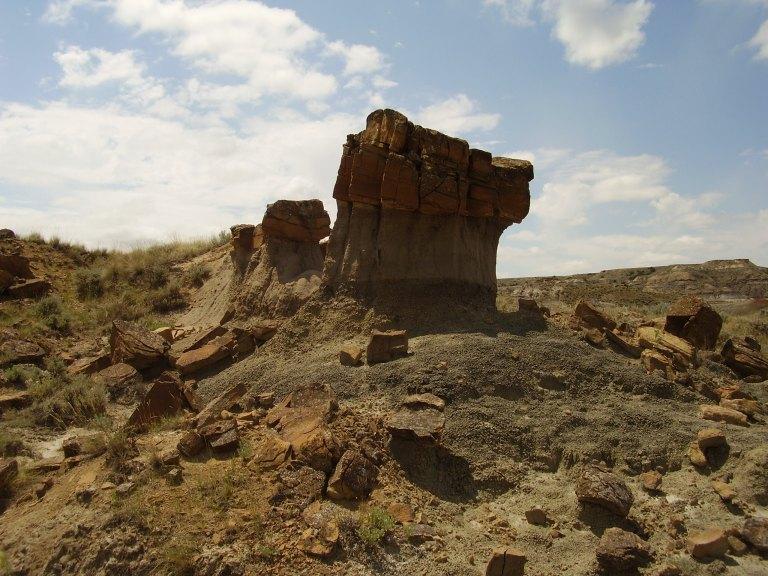 Sedimenty souvrství Hell Creek uchovávají nespočetné fosilní pozůstatky posledních žijících neptačích dinosaurů, ptakoještěrů a mnoha dalších skupin tehdejších organismů. Vzácně však v nich lze objevit také zkameněliny velkých mořských obratlovců, ja