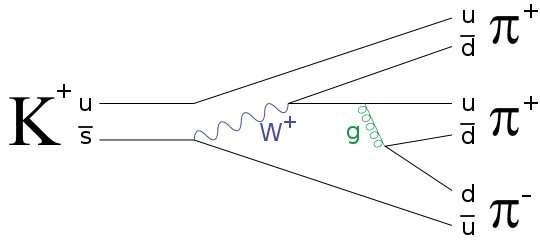 Příklad Feynmanova diagramu pro jeden z běžnějších hadronových rozpadů nabitého mezonu K. Uplatňuje se u něj slabá zprostředkovaná intermediálním bosonem W i silná interakce zprostředkovaná gluonem. (Zdroj JabberWok on Wikipedia).