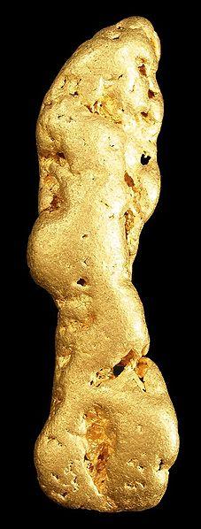Velký nuget zlata zAljašky. Kredit: Robert M. Lavinsky / Wikimedia Commons