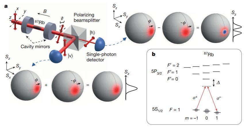 Jak entanglovat velkĂ˝ soubor atomĹŻ jedinĂ˝m fotonem. Kredit: McConnell et al. (2015), Nature.
