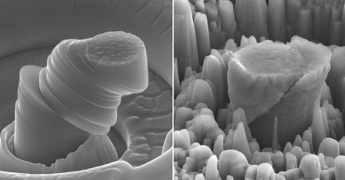 Vlevo hořčík, vpravo hořčík snanočásticemi karbidu křemíku. Kredit: UCLA Scifacturing Laboratory.