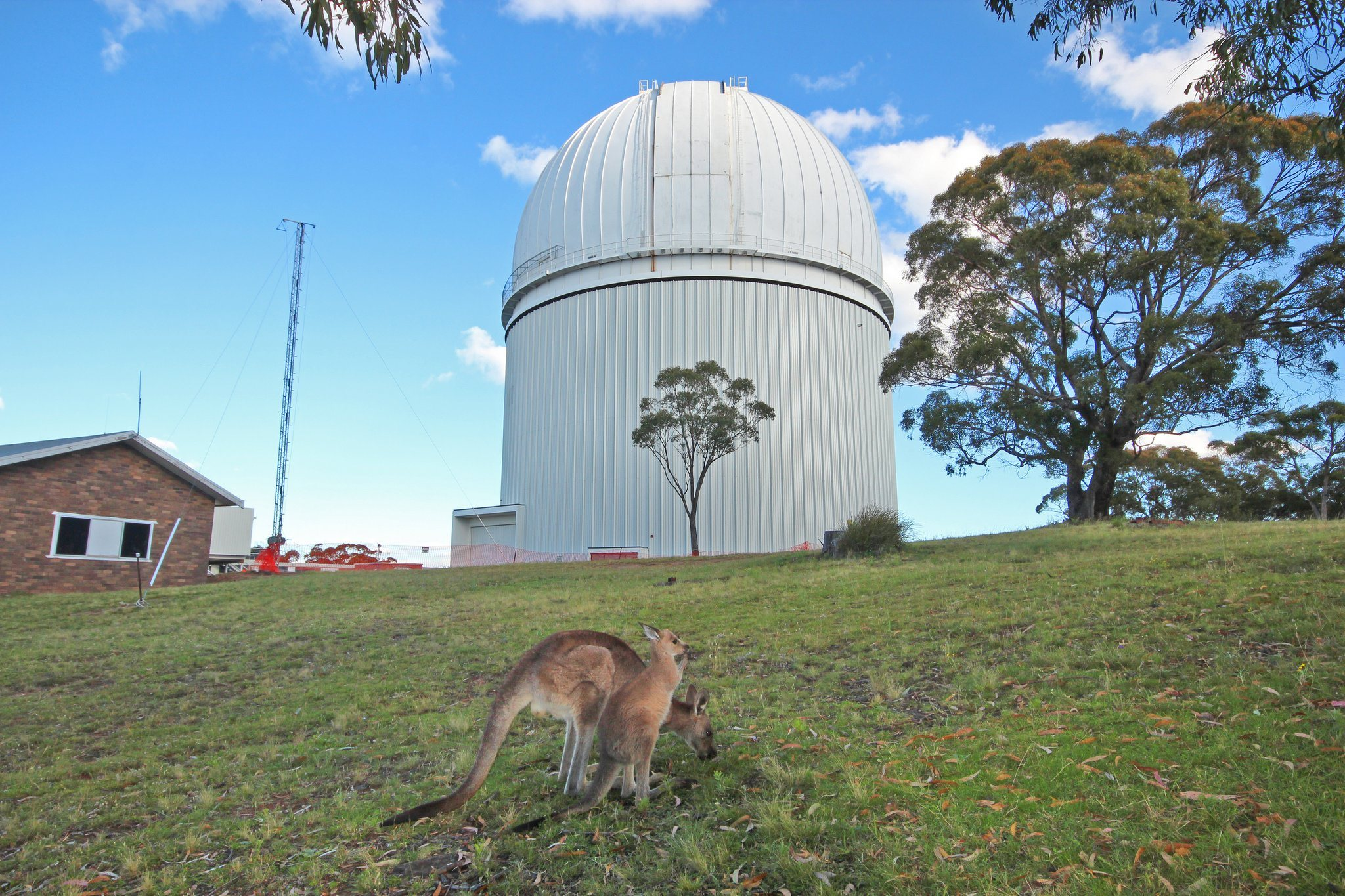 Australská astronomická observatoř. Kredit: AAO.