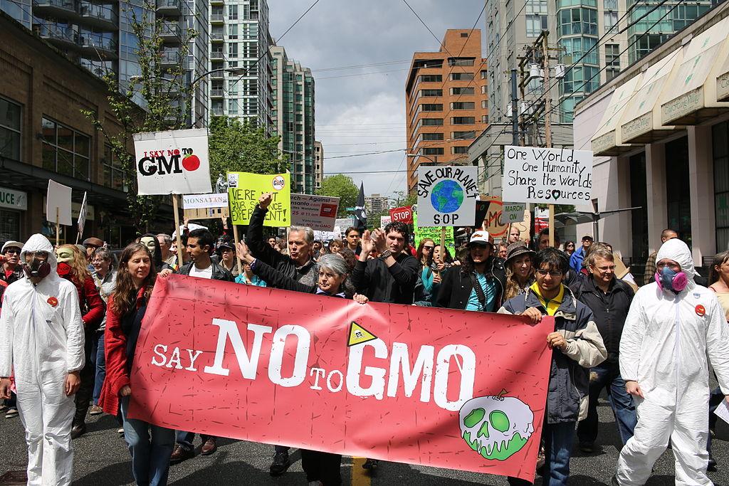Aktivisté mají sGMO očividně problém. Kredit: Rosalee Yagihara / Wikimedia Commons.