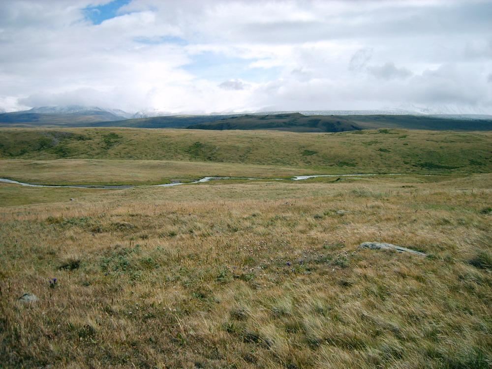 Planina Ukok voblasti Altaje, jeden zdnešních zbytků mamutí stepi. Kredit: Kobsev, Wikimedia Commons.
