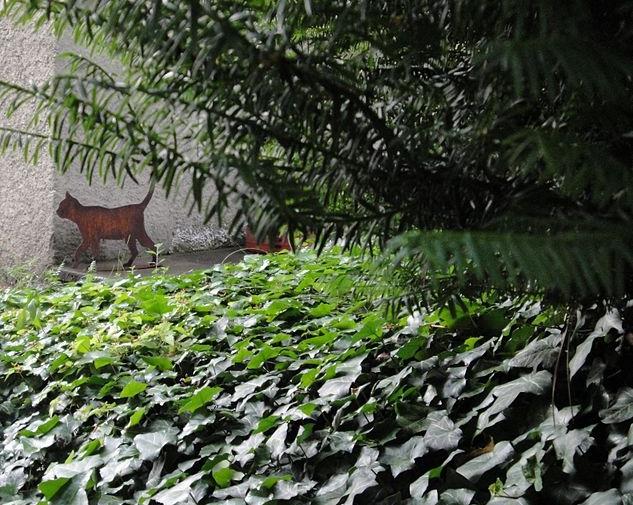 Plastika Schrödingerovy kočky v zahradě curyšského domu na Huttenstrasse, kde v letech 1921 až 1926 žil Erwin Schrödinger. Kredit: Koogid, Wikimedia Commons