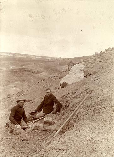 Barnum Brown (vlevo) s Henry F. Osbornem na vykopávkách u Como Bluff v roce 1897. Zde šlo ještě o dinosaury z období pozdní jury. Za několik let ale Brown objeví a o tři roky později Osborn formálně popíše také prvního tyranosaura. A