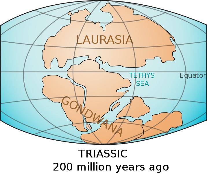 Rozložení kontinentů vtriasu, před 200 miliony let. Kredit: USGS.