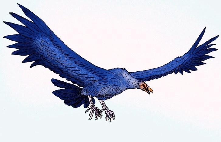Rekonstrukce přibližného vzezření druhu Argentavis magnificens. Dnes předpokládáme, že tento obří pták s rozpětím křídel až přes 6 metrů žil podobně jako současní kondoři andští a byl tedy nejspíš příležitostným mrchožroutem. Kredit: Stanton F. Fink,