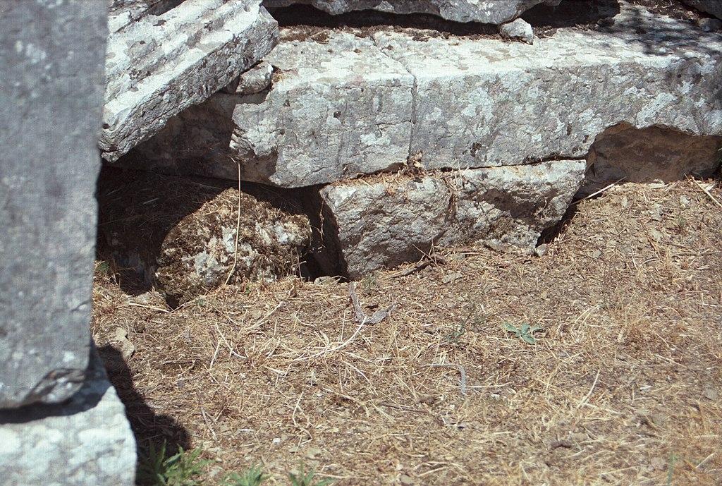 Hadí hnízdo pod bází pro antické sochy v chrámu Despoiny. Kredit: Zde, Wikimedia Commons.