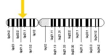 Gen C9orf72 máme na devátém chromozomu.