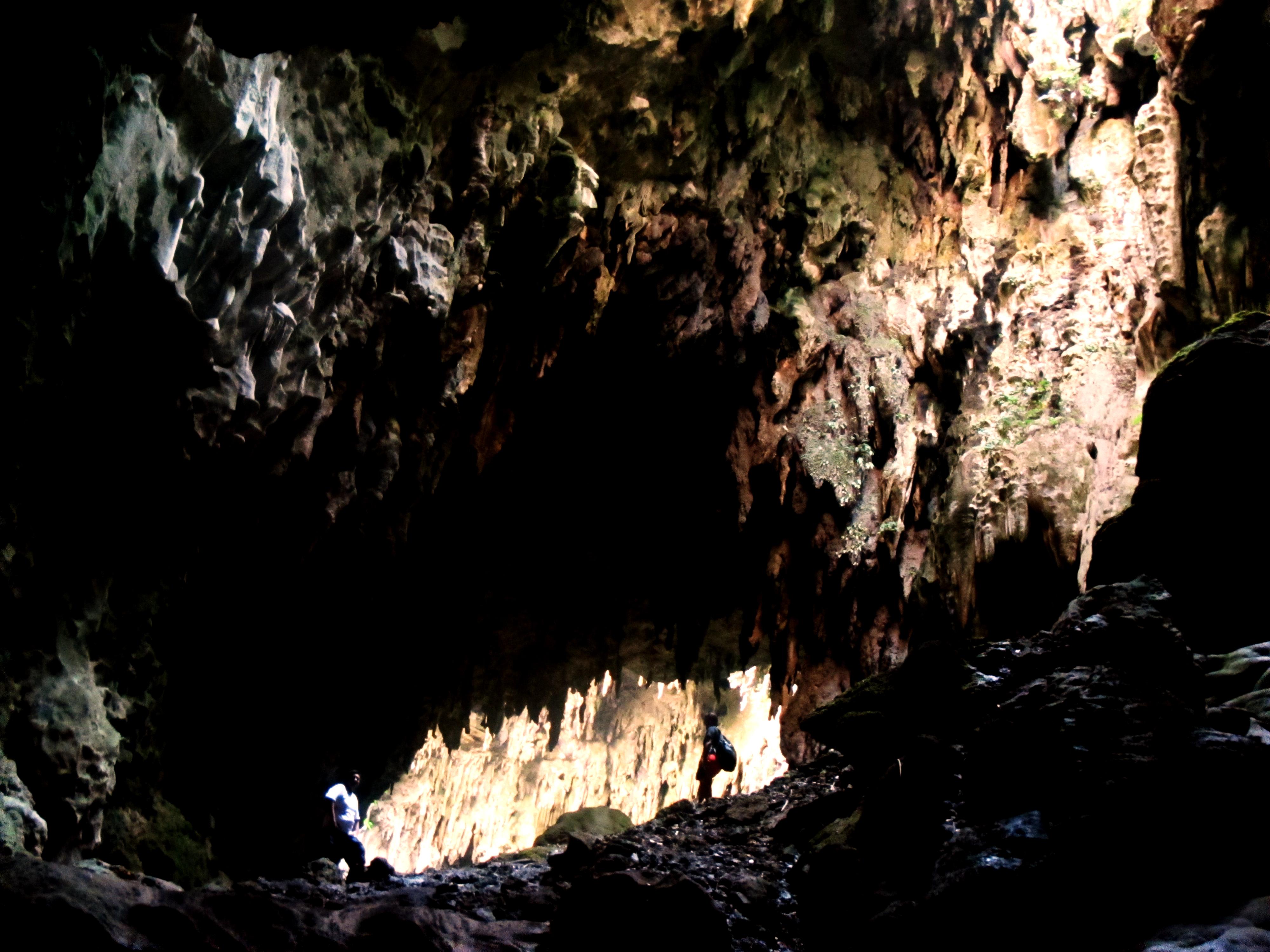 Vnitřní prostor jeskyně Callao Cave na ostrově Luzon. Kredit: Ervin Malicdem. Snímek pořízen v roce 2013. CC BY-SA 4.0         https://en.wikipedia.org/wiki/Callao_Cave#/media/File:Callao_Cave.jpg       Další obrázky z vykopávek projektu CALLAO CAVE