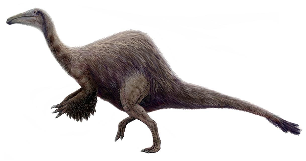 """Současná představa o vzhledu deinocheira, kdysi záhadného teropoda z pouště Gobi. Tento šestitunový opeřený kolos s kachním zobákem rozhodně nepřipomíná žádného z """"klasických"""" dinosaurů Burianovy éry. Kredit: FunkMonk (Mich"""