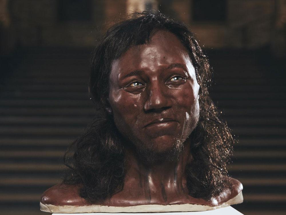 Chedar man - rekonstrukce podoby je z dílny Adrie a Alfonsa Kennisových. Busta je vystavena v Národním muzeu v Londýně. Kredit: UCL