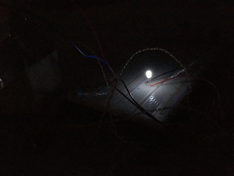Světlo ztemnoty. Kredit: A. Raman.
