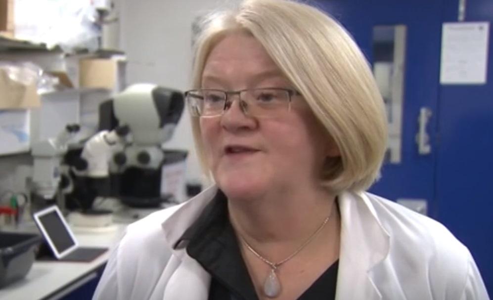 Evelyn Telfer. University of Edinburg