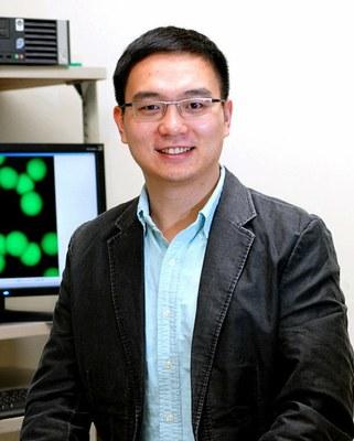 Zhen Gu, bioinženýr na University of North Carolina at Chapel Hill. Vylepšovatel náplastí všeho druhu.