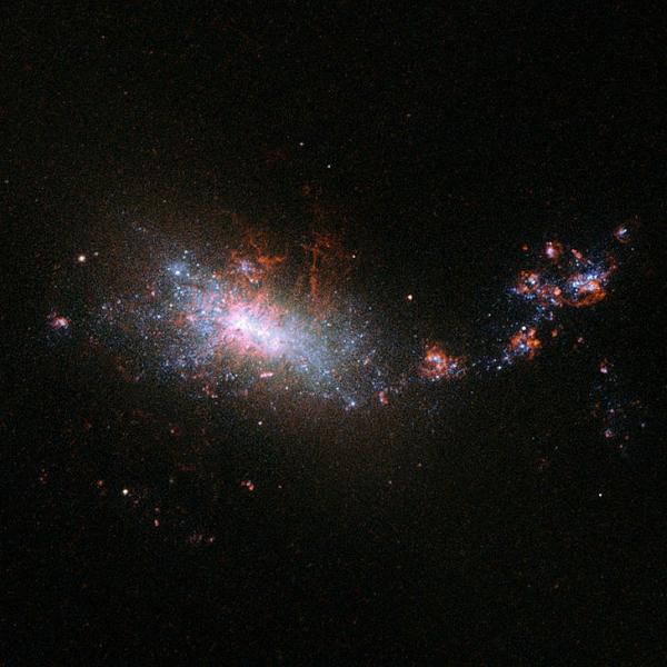 Trpasličí galaxie NGC 1140, bouřlivě tvořící nové hvězdy. Kredit: ESA / Hubble & NASA.