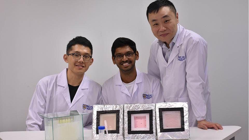 Tan Swee Ching (vpravo) se svým týmem. Kredit: National University of Singapore.
