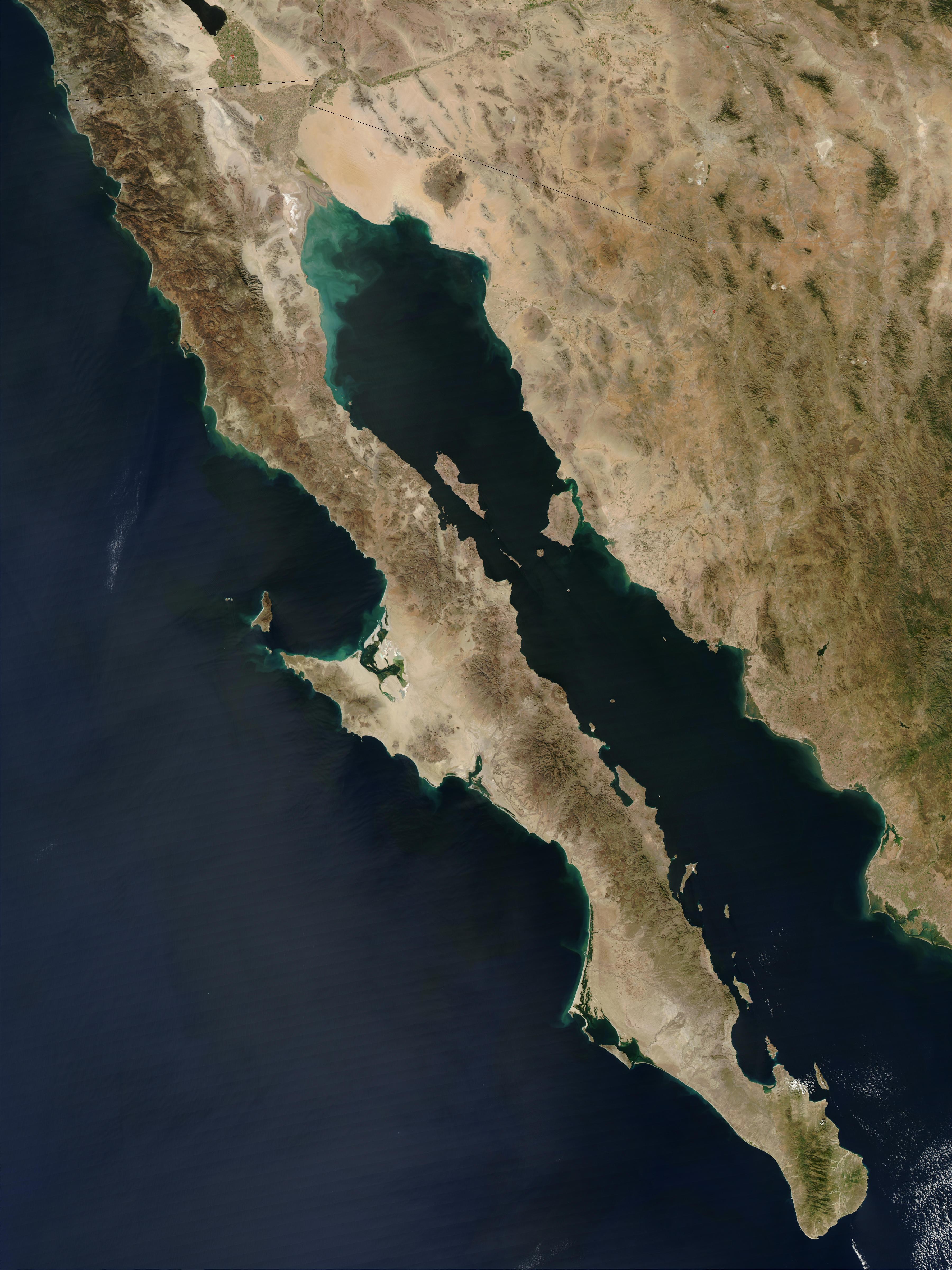 """Kalifornský záliv, alias Cortézovo moře, z větší části obklopuje poušt Sonor a tamní ostrovy jsou unikátní svou ohromnou biologickou diverzitou. Proto je v UNESCO v roce 2005 zařadilo na seznam světového dědictví jako """"Ostrovy a chráněná území Kalifo"""