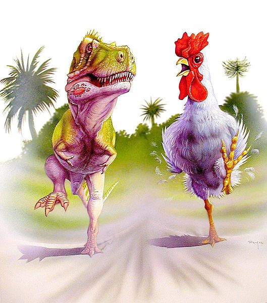 """Takto to Horner určitě nemyslel – dinokuře má mít velikost pouze skutečného poddruhu Gallus gallus domesticus. S dávkou osobitého humoru paleontolog dodává, že si přece """"nevytvoří nic, co by snědlo jeho samotného nebo přítomné"""