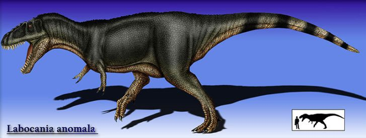 Rekonstrukce přibližného vzezření teropoda druhu Labocania anomala. Pravděpodobně šlo o tyranosauroida, ačkoliv jeho přesné systematické zařazení zatím není jisté. Kredit: Karkemish, Wikipedie (CC BY-SA 3.0)