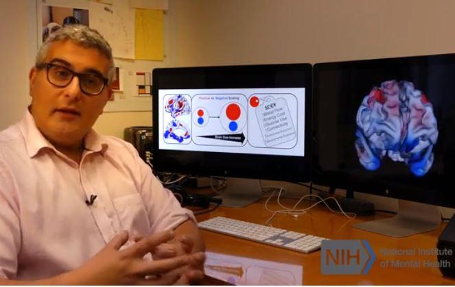 Dr. Armin Raznahan, šéf oddělení vývojové neurogenomiky Národního ústavu duševního zdraví USA. Kredit: National Institute of Mental Health