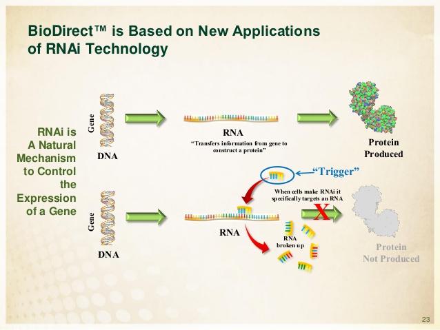 Technologie BioDirect. Kredit: Monsanto.