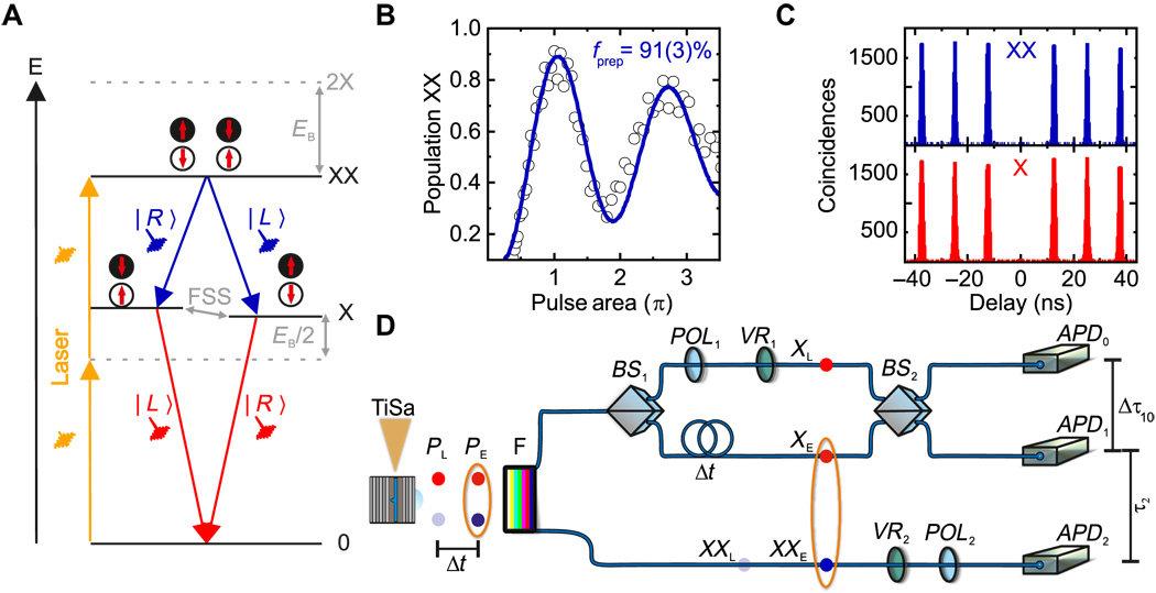 Zařízení pro teleportaci fotonů zkvantových teček. Kredit: Science Advances (2018).