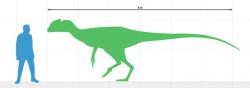 Juratyrant langhami byl prvním známým druhem tyranosauroidního teropoda dosahujícího délky přes čtyři metry a hmotnosti přes 200 kilogramů (jeho délka činila asi 5 až 6 metrů a hmotnost zhruba 300 až 500 kg). Přesto ani tento druh zřejmě nebyl dominantním predátorem svých ekosystémů. Žil na území dnešní Velké Británie v období pozdní jury, asi před 149 miliony let. Kredit: Eotyrannu5, Wikipedie (CC BY-SA 4.0)